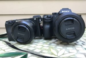 APS-C vs Full Frame RAW files | Enthusiast Photography Blog