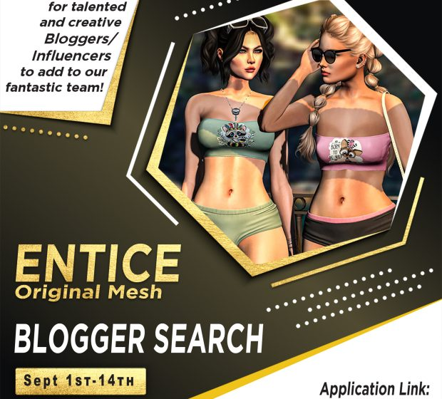 Entice – Blogger Search September 2021!