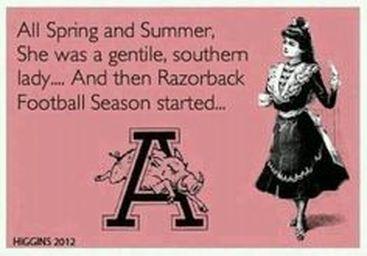 Arkansas Razorback fan
