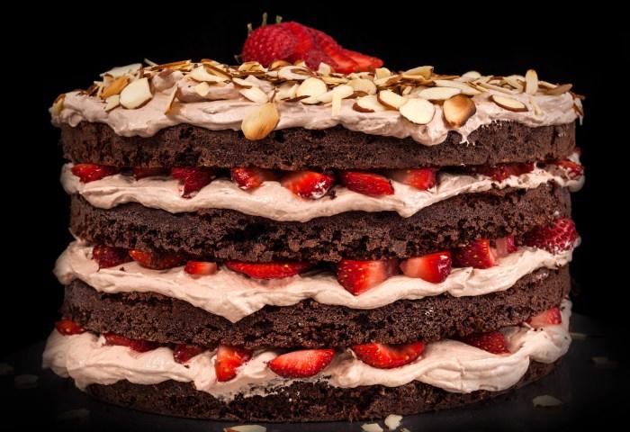 Best Chocolate Birthday Cake 60 Impressive Birthday Cake Recipes