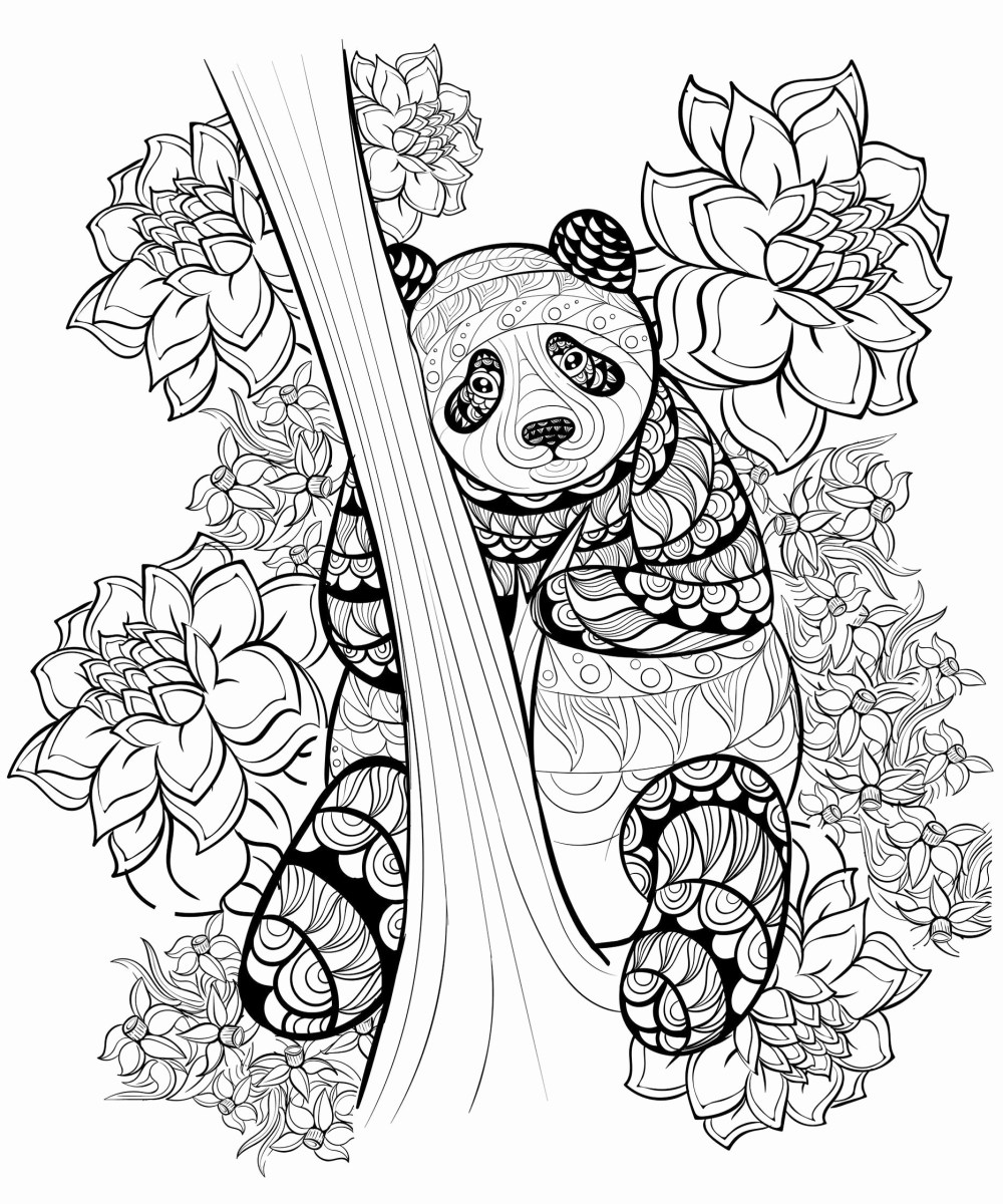 Blank Coloring Pages Free Printable Coloring Page Best Blank Coloring Pages Free Ruva