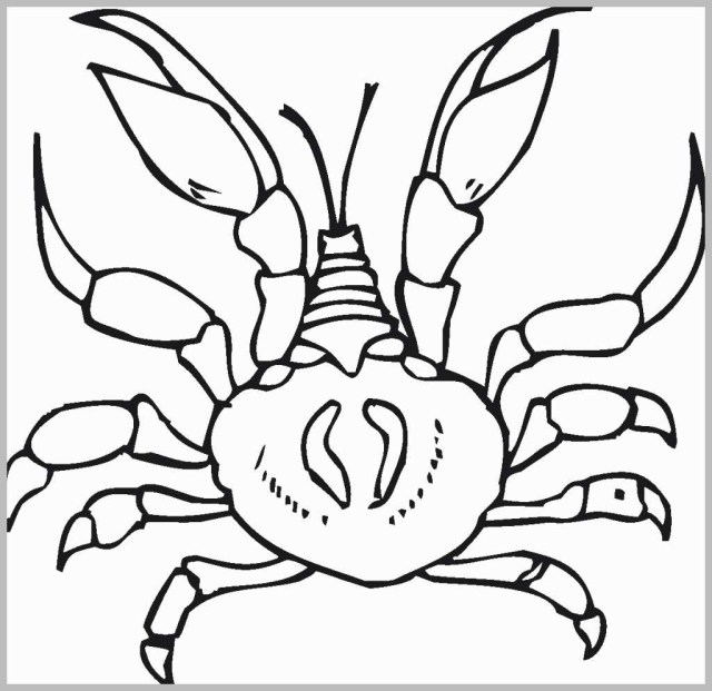 Crab Coloring Pages Crab Coloring Pages Great Free Printable Crab Coloring Pages For