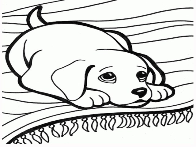 Dog Coloring Pages For Adults Coloring Pages Coloring Pages Dogs Puppies Dog Coloring Pages For