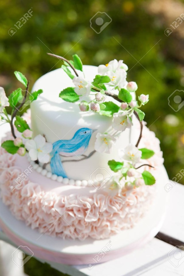 Elegant Birthday Cakes Elegant Wedding Or Birthday Cake Decorated With Pink Ruches And