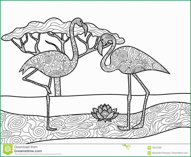 Flamingo Coloring Pages Flamingo Coloring Pages For Adults Inspirational Flamingo Coloring