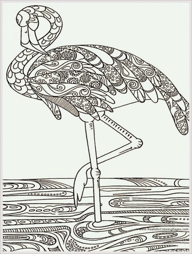 Flamingo Coloring Pages Pink Flamingo Coloring Pages