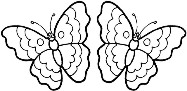 Free Butterfly Coloring Pages Butterfly Coloring Sheets Kids Colorine 22165 Coloring Home