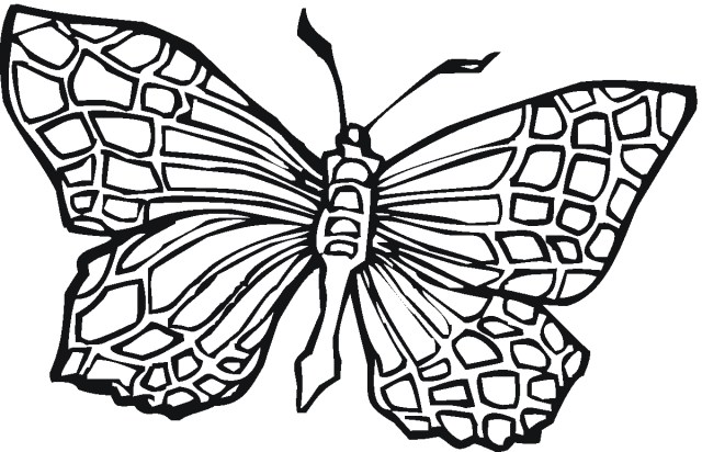 Free Butterfly Coloring Pages Free Butterfly Coloring Pages New Printable Design 1200774