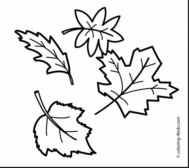 Leaf Coloring Page Fall Leaves Coloring Pages Wpvote