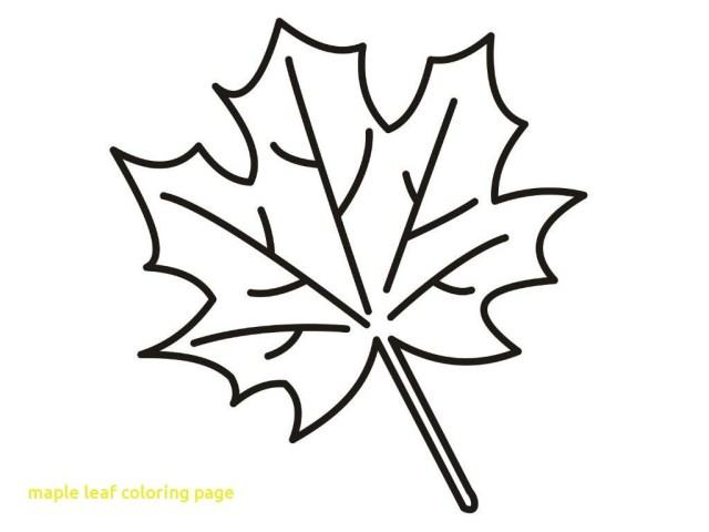 Leaf Coloring Page Leaf Coloring Page Bitslice