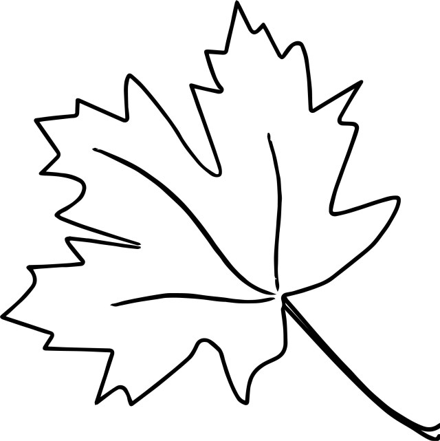 Leaf Coloring Page New Autumn Leaf Coloring Page Wecoloringpage