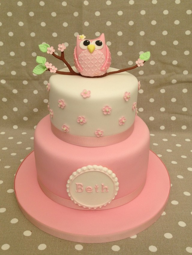 Owl Birthday Cakes Owl Birthday Cake Emma And Bella Birthday Ideas Cake Birthday