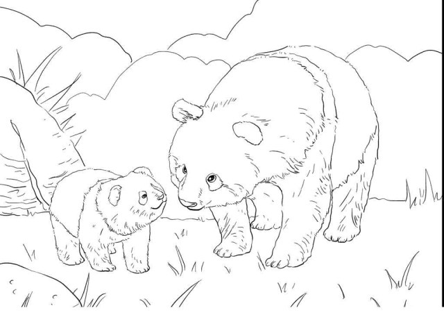 Panda Bear Coloring Pages Panda Bear Coloring Pages Now Magnificent Super Coloring Page