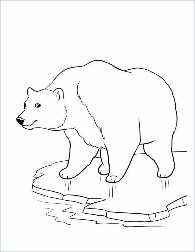 Polar Express Coloring Pages Polar Express Coloring Pages Best Of Coloring Page Tourmandu Coloring