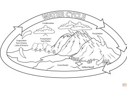 Water Cycle Coloring Page Water Cycle Coloring Page Free Printable Coloring Pages