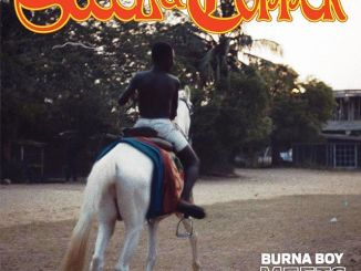 FULL EP : Burna Boy X DJDS – Steel & Chopper
