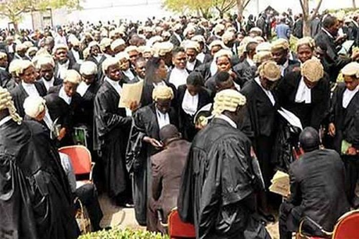 Nigerian Lawyers