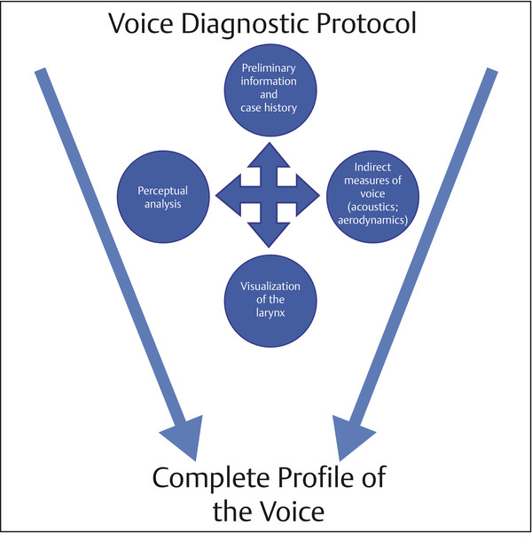 Diagram of the interrelationship between case history, perceptual evaluation, indirect measures of voice, and laryngeal visualization used in the voice diagnostic protocol. The result of the protocol