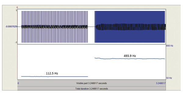 Recordings of the lowest phonation pitch and F0 in modal register and the highest phonational pitch and F0 in falsetto register from a typical adult male combined into a single sound file. The total p