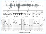Speech Acoustic Measurement and Analysis