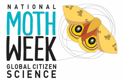 Got Moths? Celebrate National Moth Week and Global Citizen Science