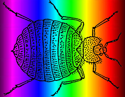 Adult Bed Bugs Prefer Red And Black But Avoid Yellow And Green