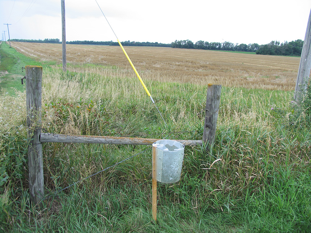 stable fly trap by field