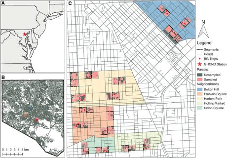 aedes albopictus baltimore study map