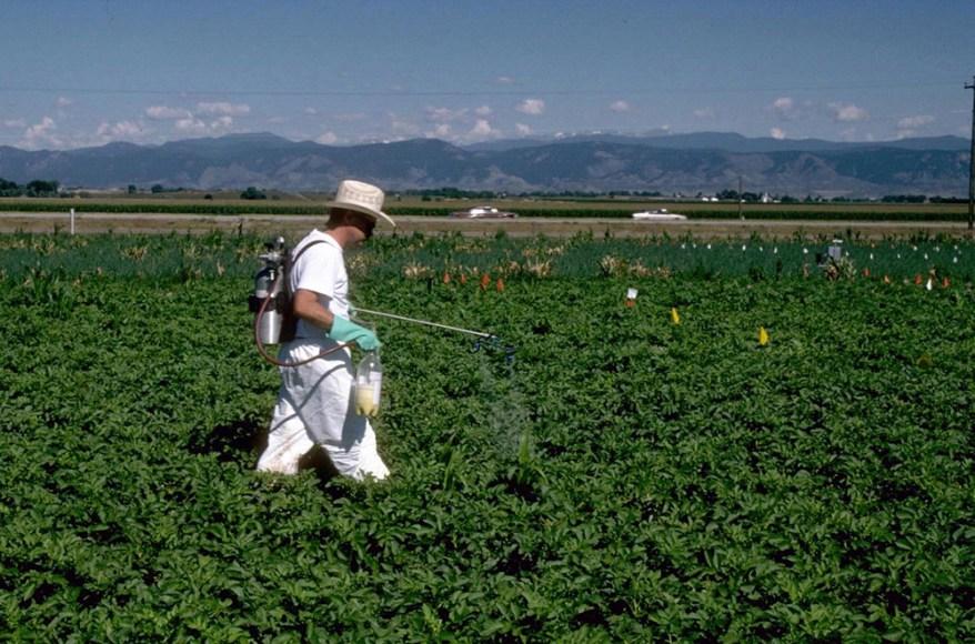 pesticide application