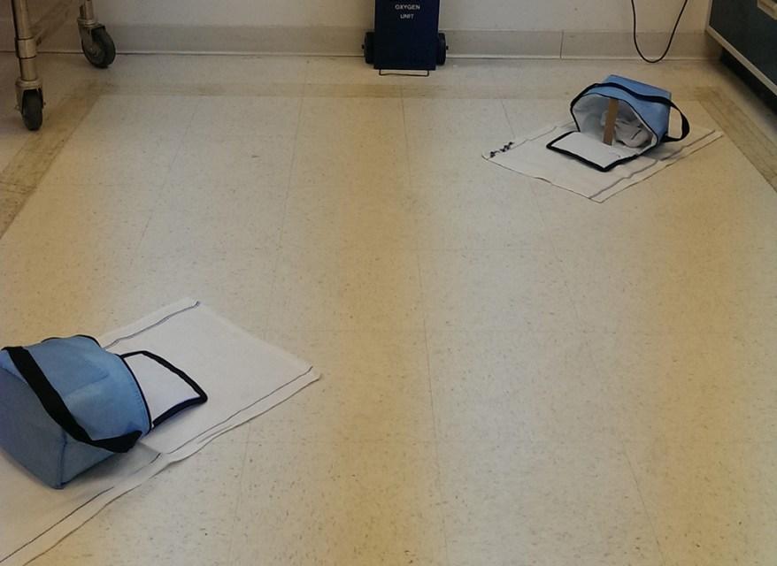 bed bug repellent experiment setup
