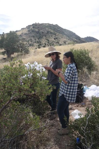 Kate Mathis and Karen Wang - Mt Lemmon Arizona