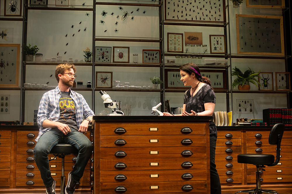 An Entomologist's Review of 'An Entomologist's Love Story'
