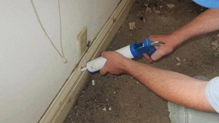 fluid termite bait application in field trail