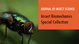 Insect Biomechanics Special Collection