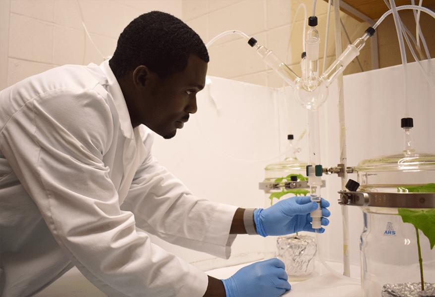 Tolulope Morawo in lab