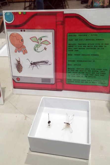 Frost Entomological Museum - Trapinch and Flygon Pokemon Display