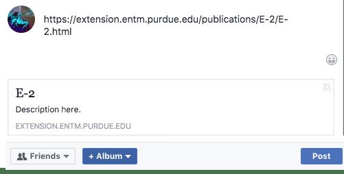 Screen shot of a Facebook fail