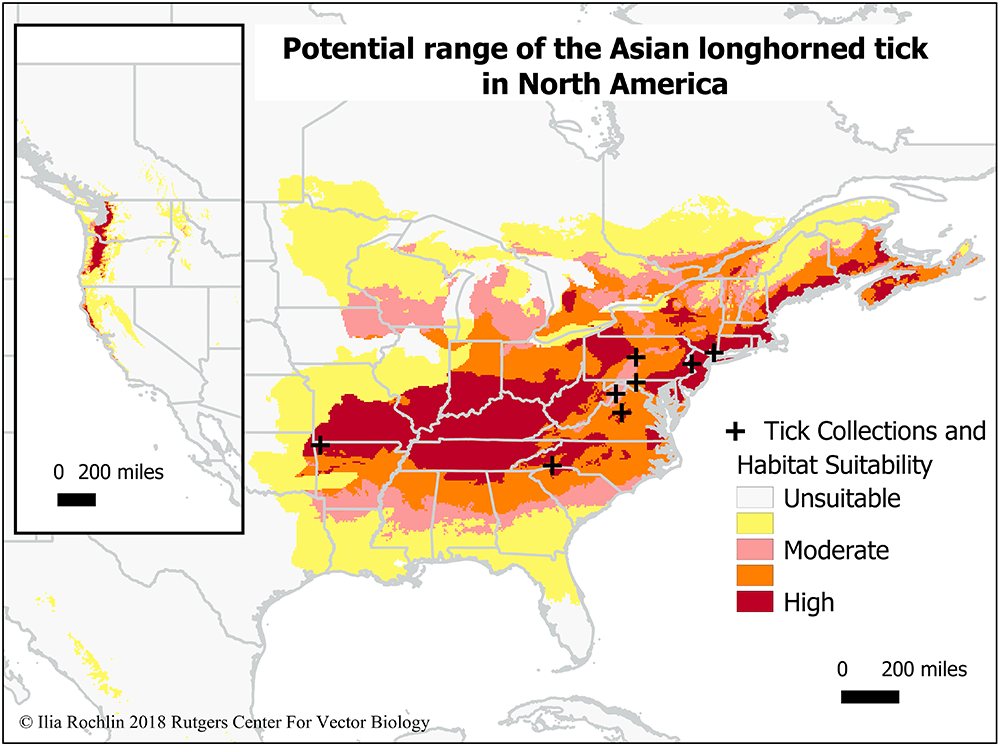 Potential Range for Asian Longhorned Tick Covers Much of Eastern U.S.