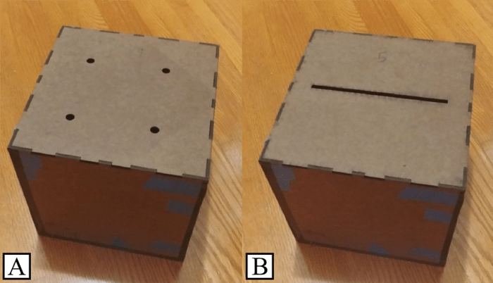 brown marmorated stink bug - opening-passage test boxes