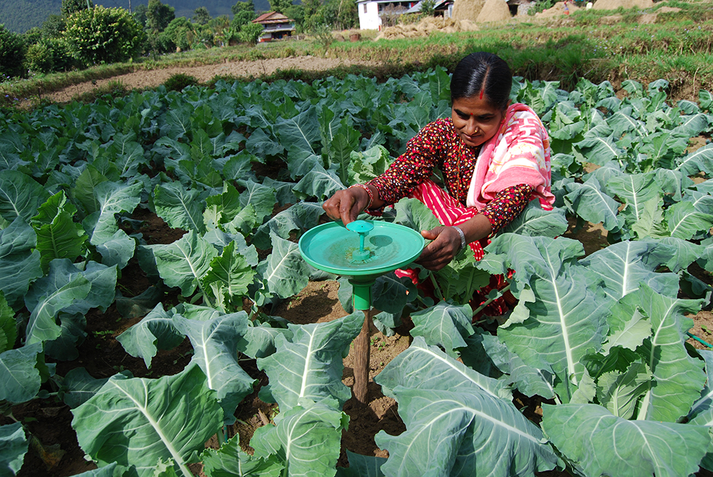 Gender Research in IPM: Women's Empowerment as a Key to Unlocking Food Security