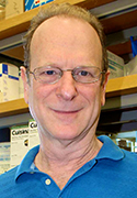 Bruce Tabashnik, Ph.D.