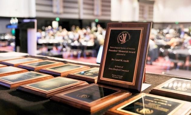 award plaques