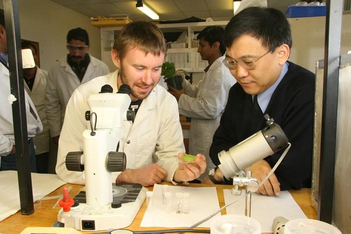 Qiao Wang, Ph.D.