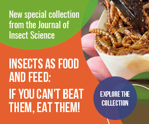 Special Collection: Insects as Food and Feed