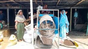 Trichoderma compost production