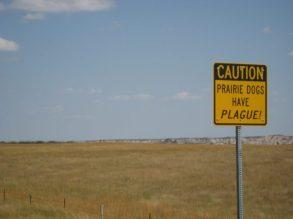 Colorado plague sign