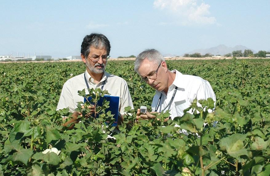 Steve Naranjo, Ph.D., and colleague Peter Ellsworth, Ph.D.