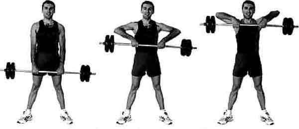 Rowing Barre Ou Haltre En Musculation Pour Dos Et Trapzes