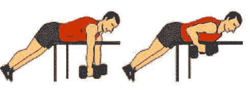 Traction En Musculation Programme Dapprentissage