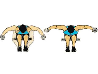 Le Rhombode Muscle Pour Redresser Le Dos Rond
